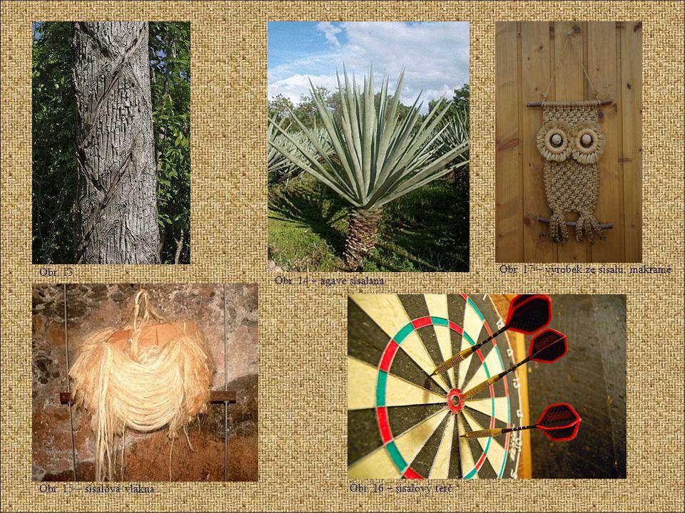 Obr. 13 Obr. 14 – agave sisalana Obr. 15 – sisalová vlákna Obr. 16 – sisalový terč Obr. 17 – výrobek ze sisalu, makramé