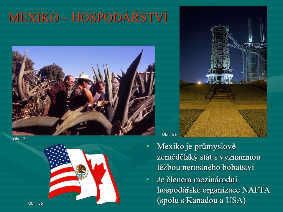 MEXIKO – HOSPODÁŘSTVÍ Mexiko je průmyslově zemědělský stát s významnou těžbou nerostného bohatstvíMexiko je průmyslově zemědělský stát s významnou těž