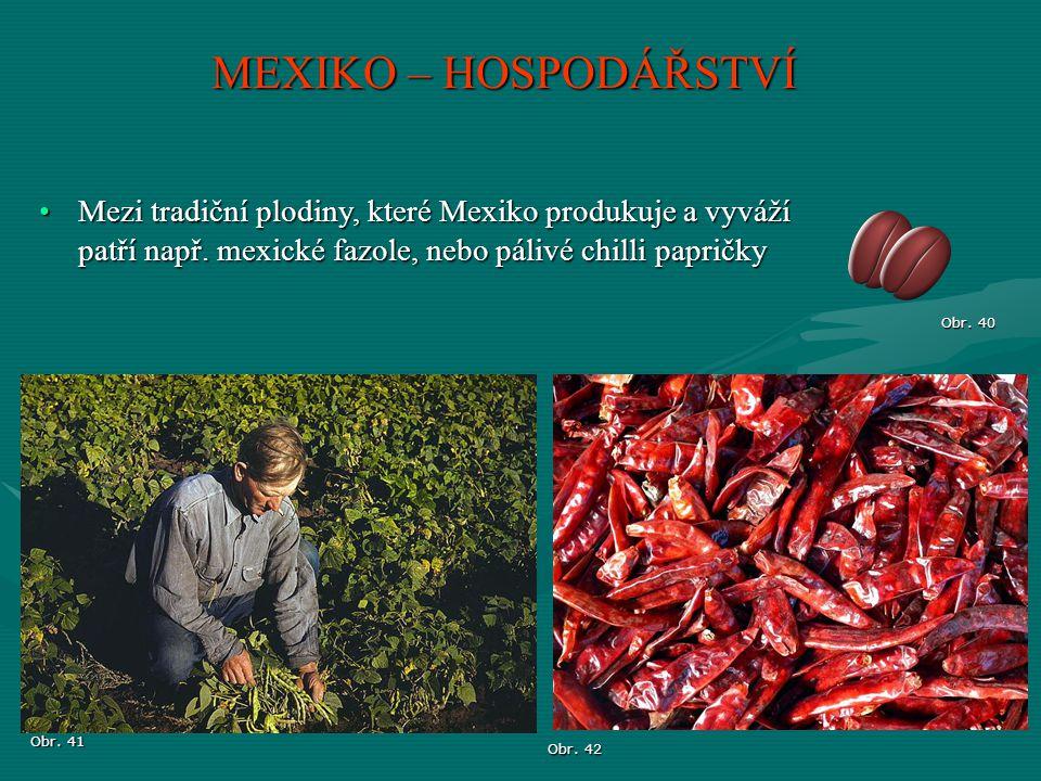 MEXIKO – HOSPODÁŘSTVÍ Obr. 40 Obr. 41 Obr. 42 Mezi tradiční plodiny, které Mexiko produkuje a vyváží patří např. mexické fazole, nebo pálivé chilli pa