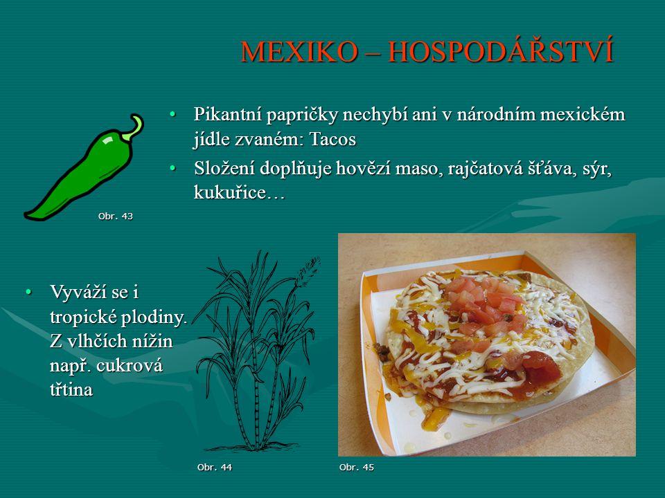 MEXIKO – HOSPODÁŘSTVÍ Obr. 43 Obr. 45 Pikantní papričky nechybí ani v národním mexickém jídle zvaném: TacosPikantní papričky nechybí ani v národním me