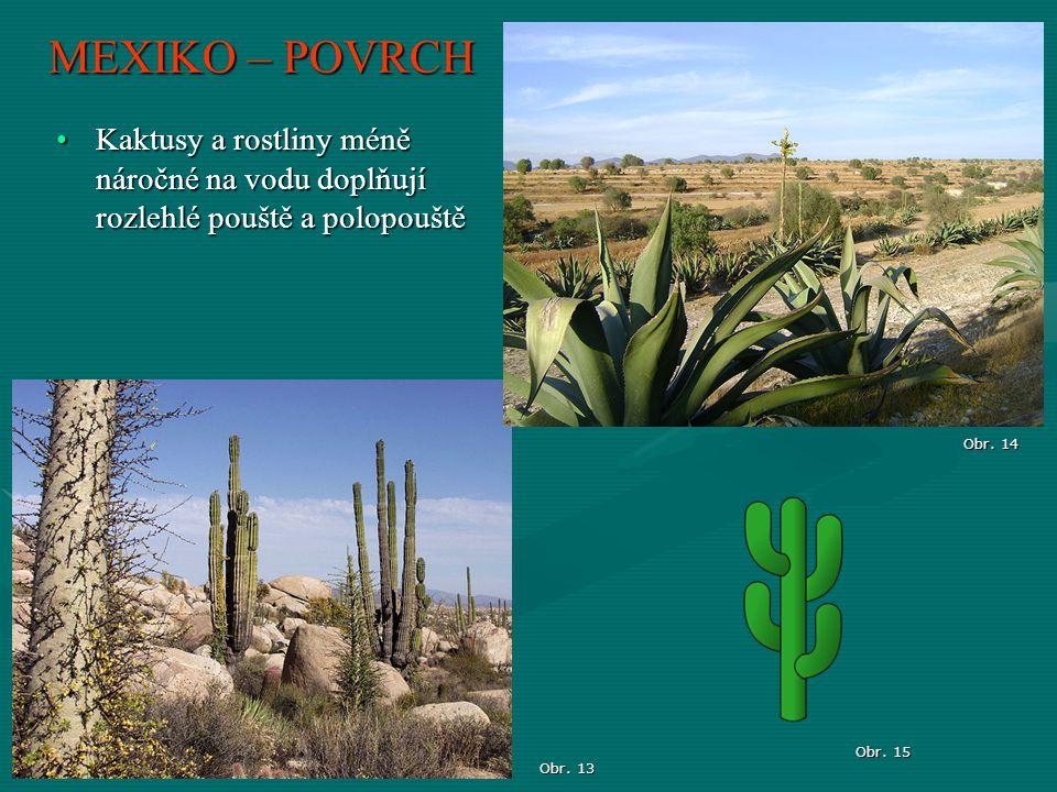Obr. 13 MEXIKO – POVRCH Obr. 14 Obr. 15 Kaktusy a rostliny méně náročné na vodu doplňují rozlehlé pouště a polopouštěKaktusy a rostliny méně náročné n