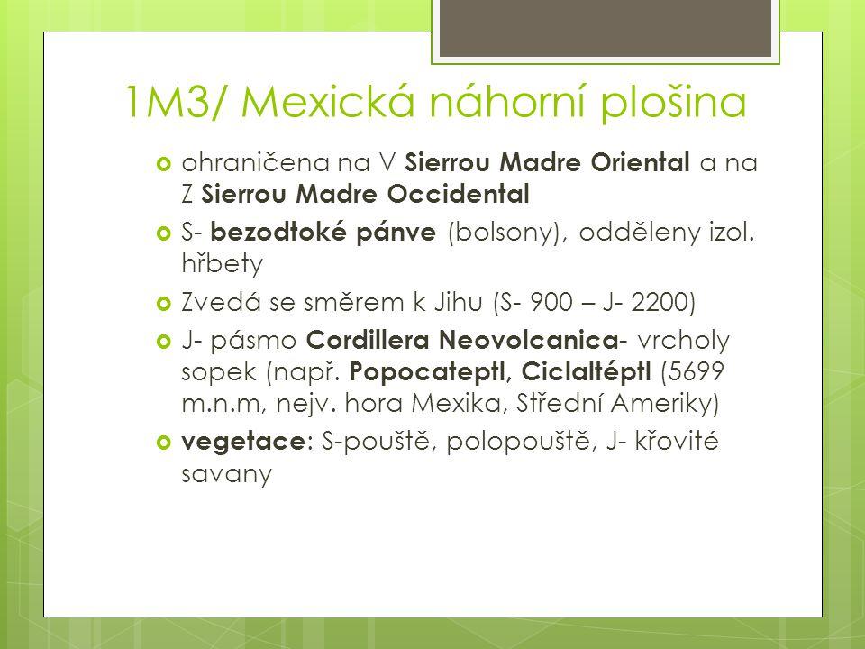 1M3/ Mexická náhorní plošina  ohraničena na V Sierrou Madre Oriental a na Z Sierrou Madre Occidental  S- bezodtoké pánve (bolsony), odděleny izol. h