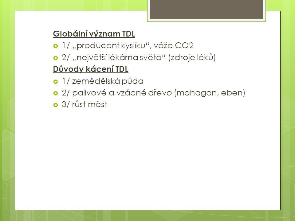 """Globální význam TDL  1/ """"producent kyslíku"""", váže CO2  2/ """"největší lékárna světa"""" (zdroje léků) Důvody kácení TDL  1/ zemědělská půda  2/ palivov"""