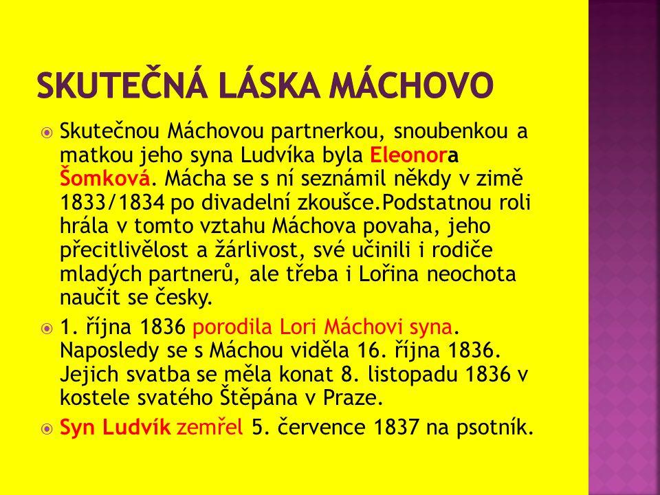  Skutečnou Máchovou partnerkou, snoubenkou a matkou jeho syna Ludvíka byla Eleonora Šomková. Mácha se s ní seznámil někdy v zimě 1833/1834 po divadel
