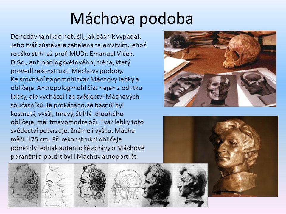 Máchova podoba Donedávna nikdo netušil, jak básník vypadal. Jeho tvář zůstávala zahalena tajemstvím, jehož roušku strhl až prof. MUDr. Emanuel Vlček,