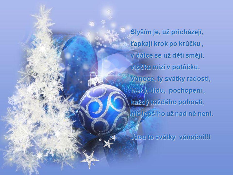 Koledy už znějí z dálky, zvěstují nám krásné svátky. Svátky plné tajných přání, setkání a pousmání. Na vánoce každý z nás do dětství se vrací rád.