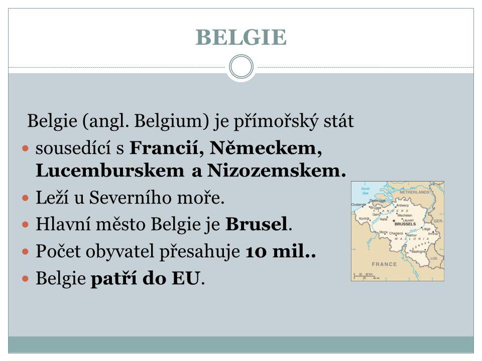 BELGIE Belgie (angl. Belgium) je přímořský stát sousedící s Francií, Německem, Lucemburskem a Nizozemskem. Leží u Severního moře. Hlavní město Belgie