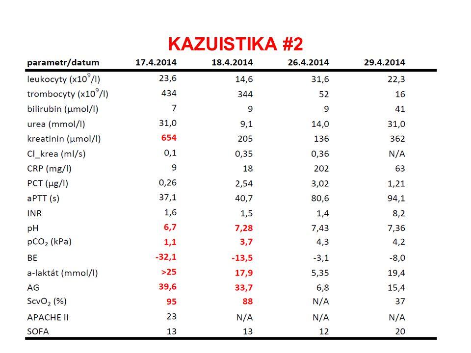 KAZUISTIKA #1 + KAZUISTIKA #2 CO MAJÍ SPOLEČNÉHO.