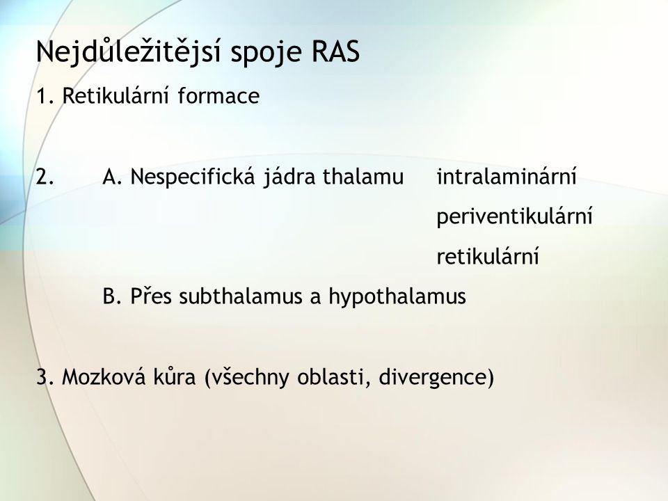 Nejdůležitějsí spoje RAS 1. Retikulární formace 2.A. Nespecifická jádra thalamu intralaminární periventikulární retikulární B. Přes subthalamus a hypo
