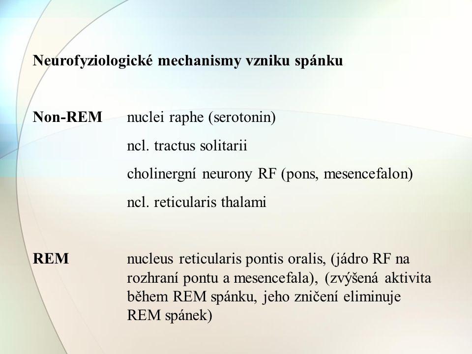 Neurofyziologické mechanismy vzniku spánku Non-REM nuclei raphe (serotonin) ncl. tractus solitarii cholinergní neurony RF (pons, mesencefalon) ncl. re