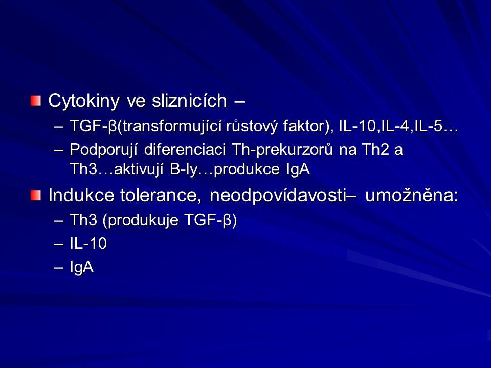Cytokiny ve sliznicích – –TGF- β(transformující růstový faktor), IL-10,IL-4,IL-5… – Podporují diferenciaci Th-prekurzorů na Th2 a Th3…aktivují B-ly…pr