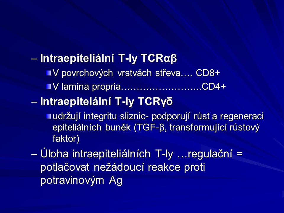 –Intraepiteliální T-ly TCRαβ V povrchových vrstvách střeva…. CD8+ V lamina propria……………………..CD4+ –Intraepitelální T-ly TCRγδ udržují integritu sliznic