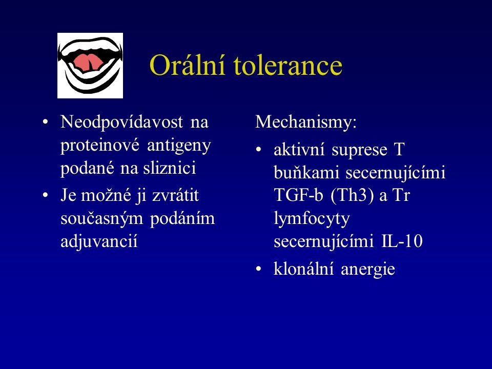 Orální tolerance Neodpovídavost na proteinové antigeny podané na sliznici Je možné ji zvrátit současným podáním adjuvancií Mechanismy: aktivní suprese T buňkami secernujícími TGF-b (Th3) a Tr lymfocyty secernujícími IL-10 klonální anergie