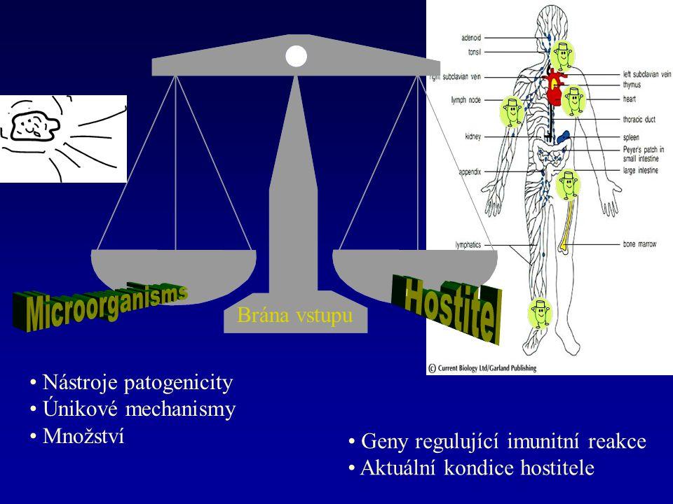 Epiteliální bariéry proti infekcím Mechanické ( neporušený povrch epitelií, longitudinální proud vzduchu a tekutin ) Chemické ( mastné kyseliny na kůži, enzymy - lysozym ve slinách, potu a slzách, pepsin ve střevě, nízké pH v žaludku, antibakteriální peptidy ve střevě ) Mikrobiální ( normální flóra - kompetice o živiny, zábrana přilnutí, produkce antibakteriálních substancí )