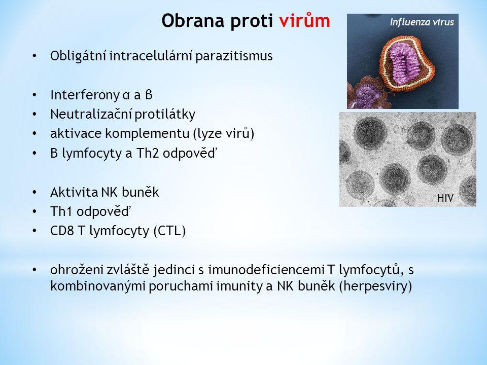 Obrana proti virům Obligátní intracelulární parazitismus Interferony α a β Neutralizační protilátky aktivace komplementu (lyze virů) B lymfocyty a Th2 odpověď Aktivita NK buněk Th1 odpověď CD8 T lymfocyty (CTL) ohroženi zvláště jedinci s imunodeficiencemi T lymfocytů, s kombinovanými poruchami imunity a NK buněk (herpesviry) Influenza virus HIV