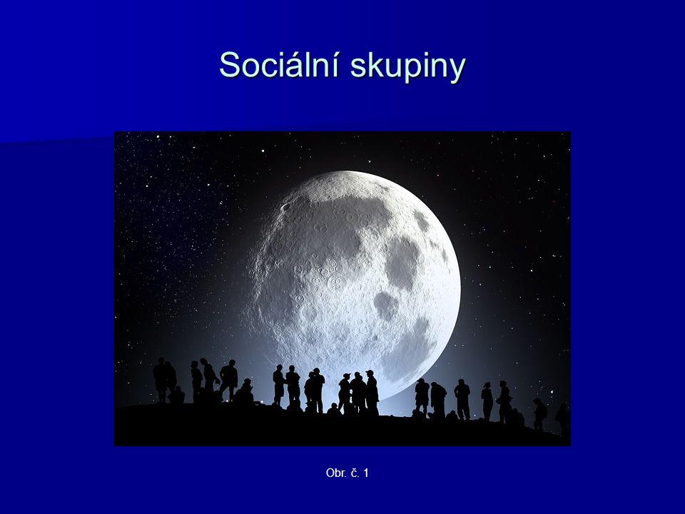 Sociální skupiny Obr. č. 1