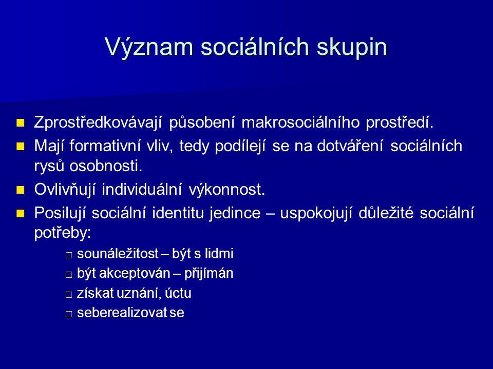 Význam sociálních skupin Zprostředkovávají působení makrosociálního prostředí.