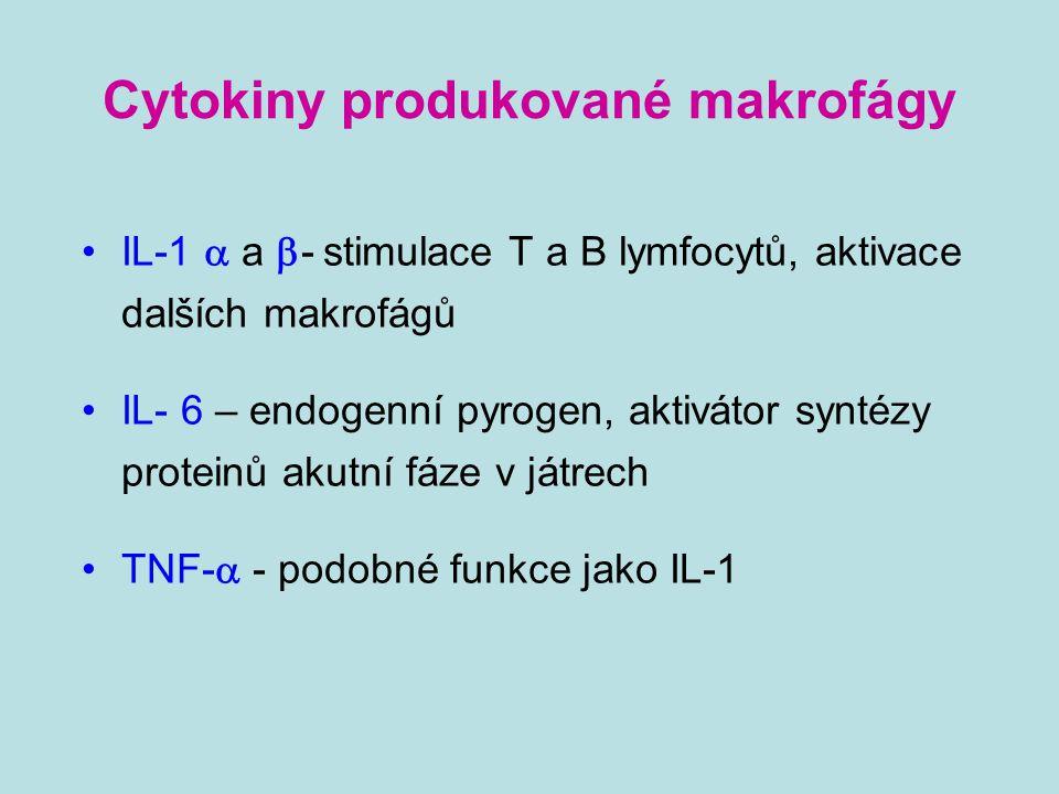 Cytokiny produkované makrofágy IL-1  a  - stimulace T a B lymfocytů, aktivace dalších makrofágů IL- 6 – endogenní pyrogen, aktivátor syntézy protein