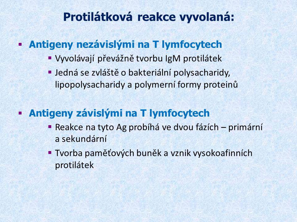 Lokální odpověď organismu na zánět Projevy - bolest (dolor), teplo (calor), zčervenání (rubor), otok (tumor) a ztrátou funkce (funkcio laesa)