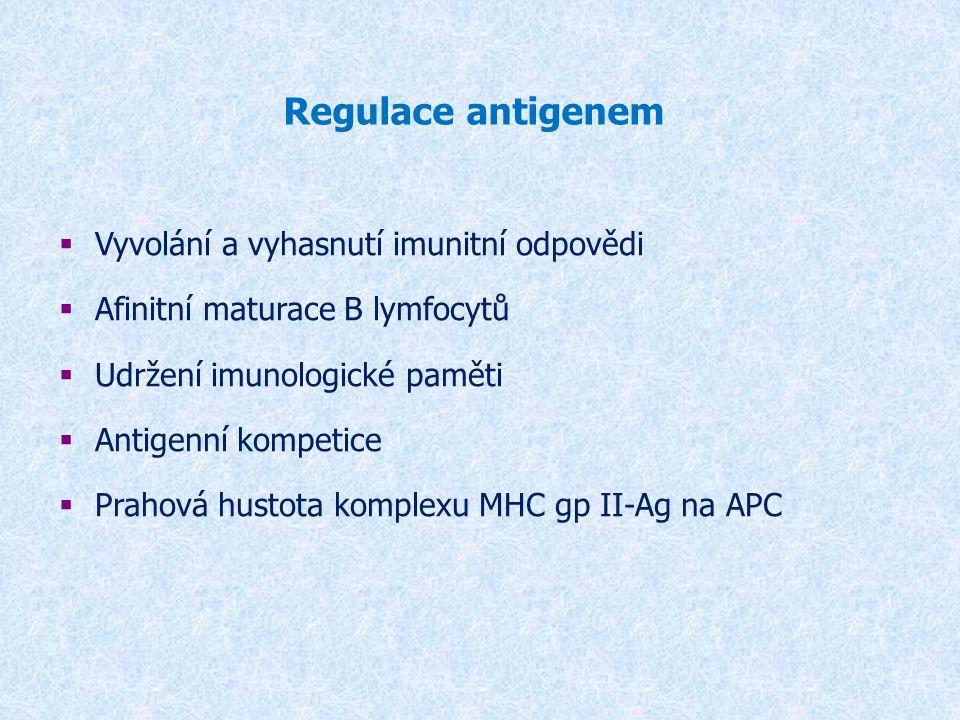Regulace antigenem  Vyvolání a vyhasnutí imunitní odpovědi  Afinitní maturace B lymfocytů  Udržení imunologické paměti  Antigenní kompetice  Prah