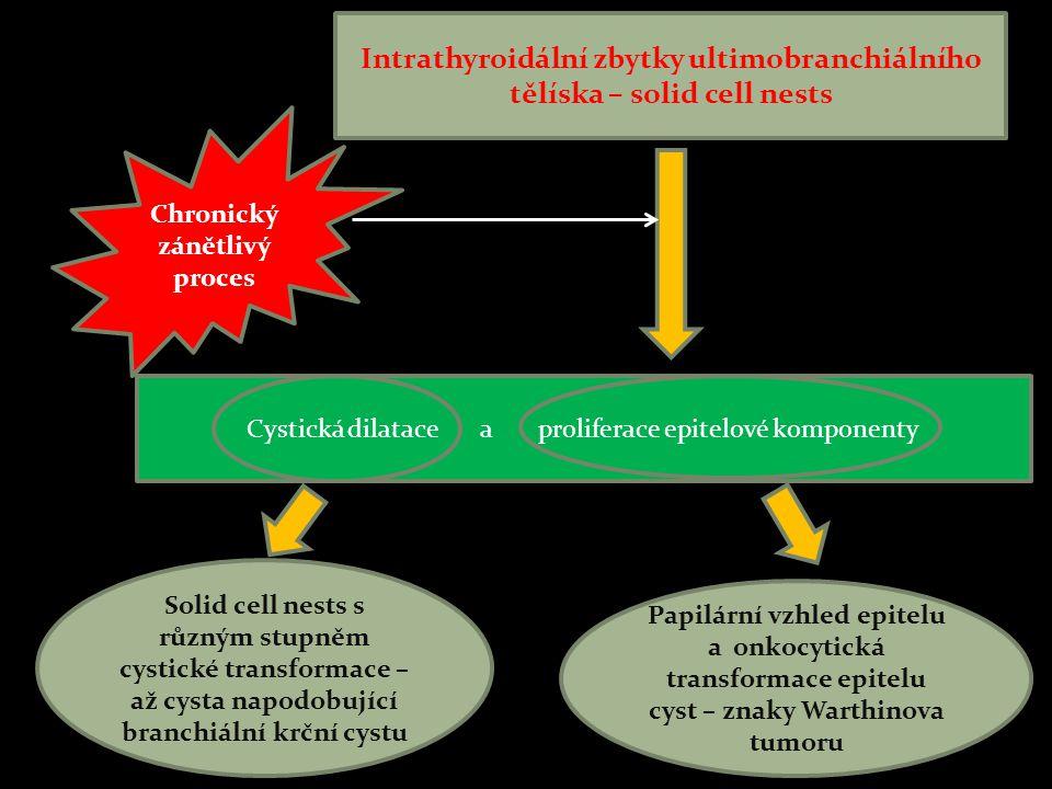 Intrathyroidální zbytky ultimobranchiálního tělíska – solid cell nests Cystická dilatace a proliferace epitelové komponenty Chronický zánětlivý proces