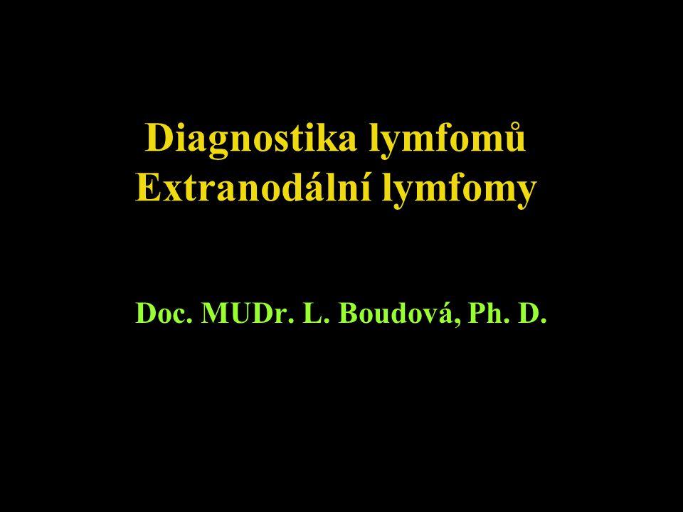 Diagnostika lymfomů Extranodální lymfomy Doc. MUDr. L. Boudová, Ph. D.