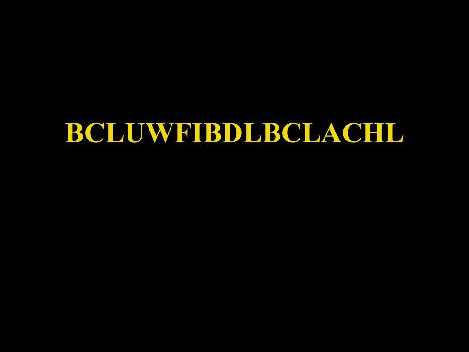 BCLUWFIBDLBCLACHL