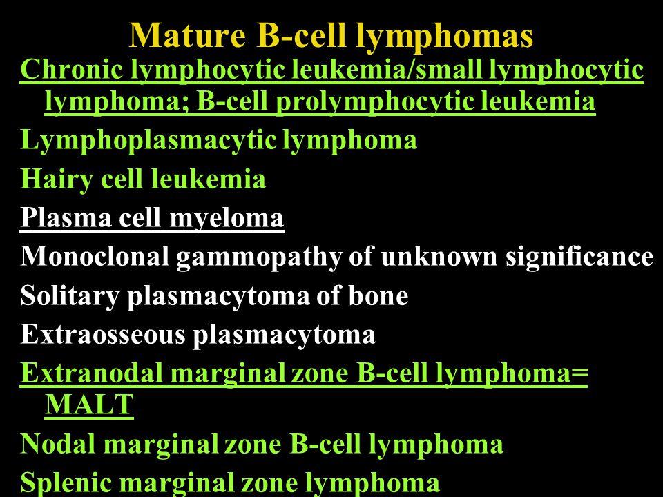 Mature B-cell lymphomas Follicular lymphoma Mantle cell lymphoma Diffuse large B-cell lymphoma Mediastinal (thymic) large B-cell lymphoma Intravascular large B-cell lymphoma Primary effusion lymphoma Burkitt lymphoma/leukaemia