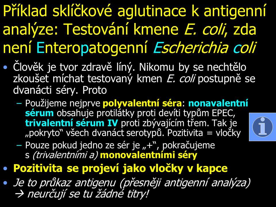 Příklad sklíčkové aglutinace k antigenní analýze: Testování kmene E. coli, zda není Enteropatogenní Escherichia coli Člověk je tvor zdravě líný. Nikom