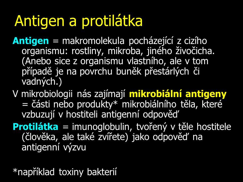 Antigen = makromolekula pocházející z cizího organismu: rostliny, mikroba, jiného živočicha. (Anebo sice z organismu vlastního, ale v tom případě je n