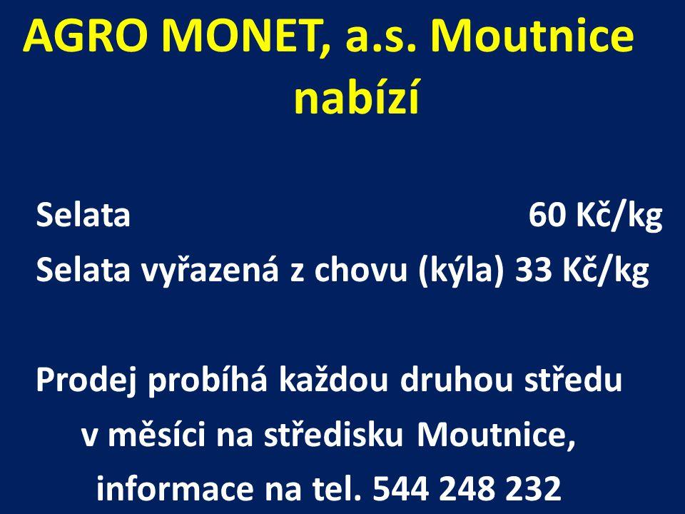 AGRO MONET, a.s. Moutnice nabízí Selata60 Kč/kg Selata vyřazená z chovu (kýla) 33 Kč/kg Prodej probíhá každou druhou středu v měsíci na středisku Mout