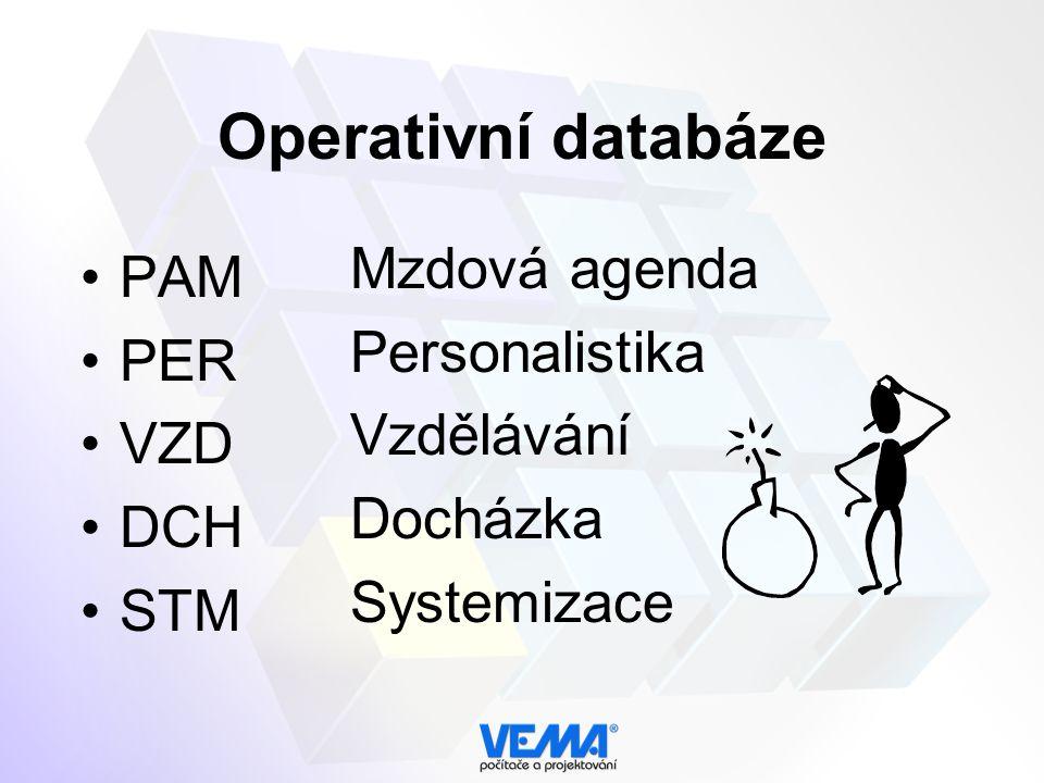 Operativní databáze PAM PER VZD DCH STM Mzdová agenda Personalistika Vzdělávání Docházka Systemizace