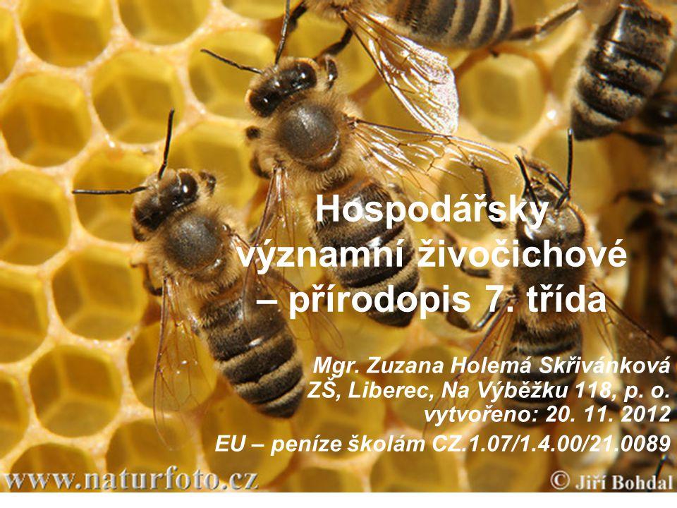 Hospodářsky významní živočichové – přírodopis 7. třída Mgr. Zuzana Holemá Skřivánková ZŠ, Liberec, Na Výběžku 118, p. o. vytvořeno: 20. 11. 2012 EU –