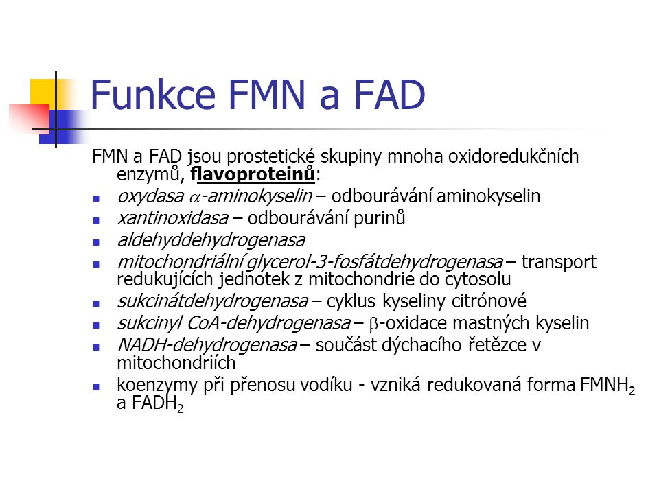 Funkce FMN a FAD FMN a FAD jsou prostetické skupiny mnoha oxidoredukčních enzymů, flavoproteinů: oxydasa  -aminokyselin – odbourávání aminokyselin xantinoxidasa – odbourávání purinů aldehyddehydrogenasa mitochondriální glycerol-3-fosfátdehydrogenasa – transport redukujících jednotek z mitochondrie do cytosolu sukcinátdehydrogenasa – cyklus kyseliny citrónové sukcinyl CoA-dehydrogenasa –  -oxidace mastných kyselin NADH-dehydrogenasa – součást dýchacího řetězce v mitochondriích koenzymy při přenosu vodíku - vzniká redukovaná forma FMNH 2 a FADH 2