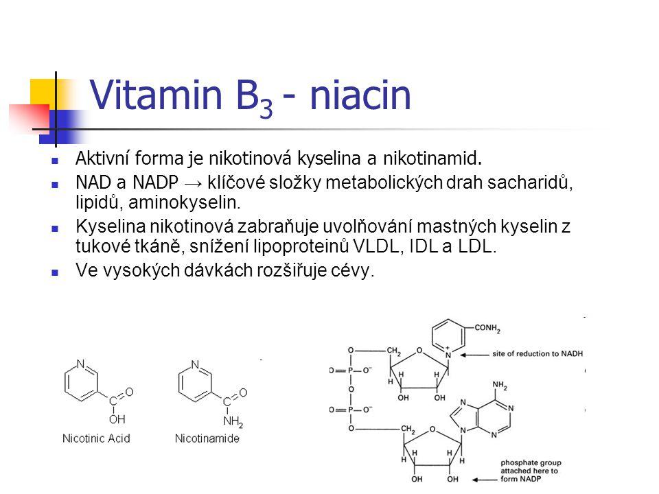 Vitamin B 3 - niacin Aktivní forma je nikotinová kyselina a nikotinamid.