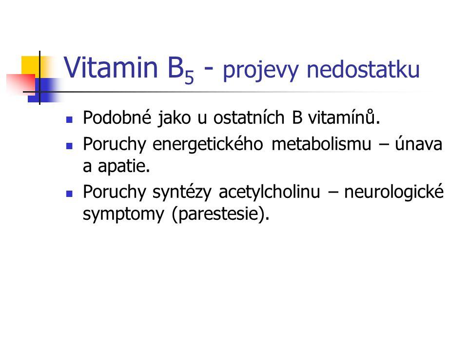 Vitamin B 5 - projevy nedostatku Podobné jako u ostatních B vitamínů. Poruchy energetického metabolismu – únava a apatie. Poruchy syntézy acetylcholin