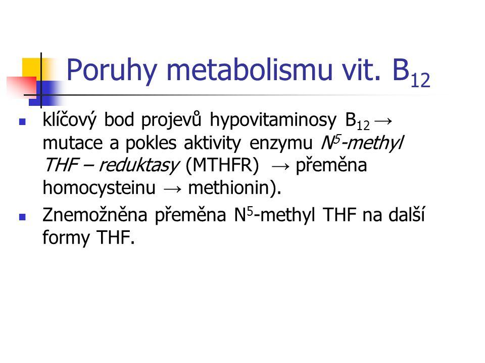 Poruhy metabolismu vit. B 12 klíčový bod projevů hypovitaminosy B 12 → mutace a pokles aktivity enzymu N 5 -methyl THF – reduktasy (MTHFR) → přeměna h