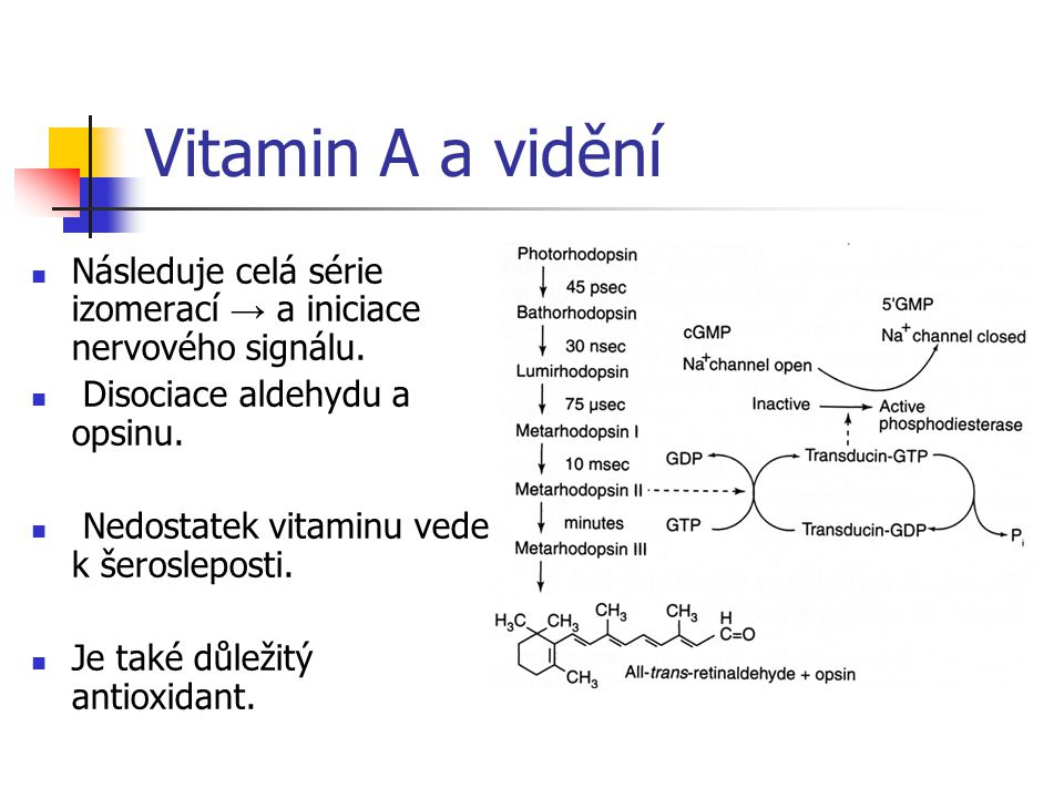 Vitamin A a vidění Následuje celá série izomerací → a iniciace nervového signálu. Disociace aldehydu a opsinu. Nedostatek vitaminu vede k šerosleposti