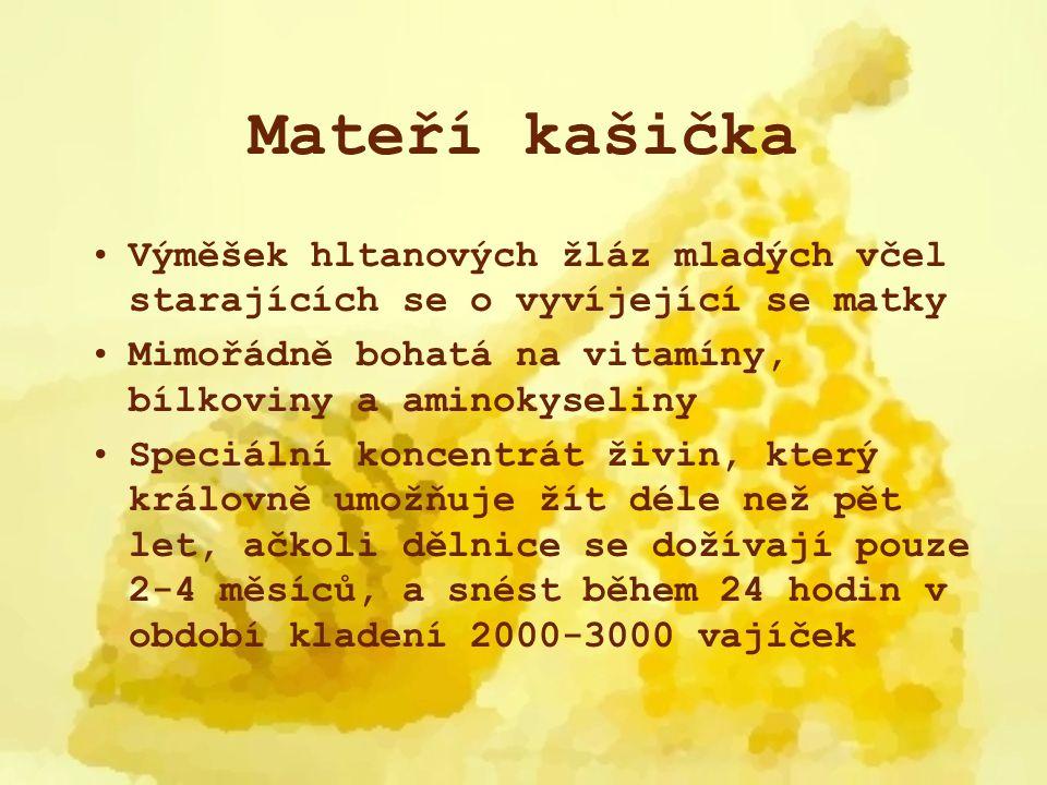 Mateří kašička Výměšek hltanových žláz mladých včel starajících se o vyvíjející se matky Mimořádně bohatá na vitamíny, bílkoviny a aminokyseliny Speci
