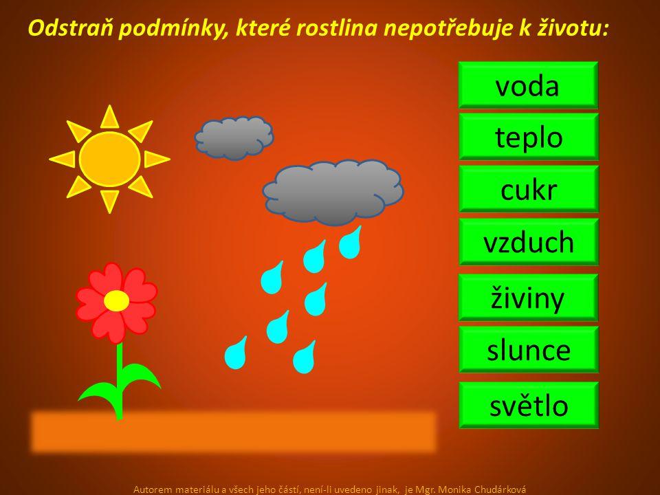 Odstraň podmínky, které rostlina nepotřebuje k životu: vzduch voda světlo živiny teplo cukr slunce Autorem materiálu a všech jeho částí, není-li uvede