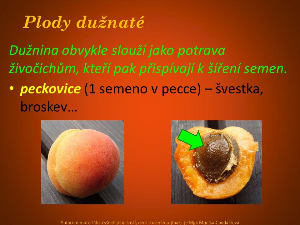 Plody dužnaté Dužnina obvykle slouží jako potrava živočichům, kteří pak přispívají k šíření semen. peckovice (1 semeno v pecce) – švestka, broskev… Au