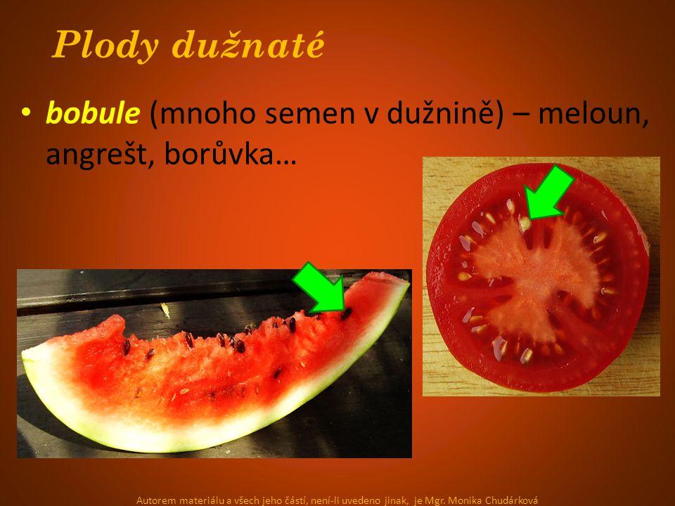 Plody dužnaté bobule (mnoho semen v dužnině) – meloun, angrešt, borůvka… Autorem materiálu a všech jeho částí, není-li uvedeno jinak, je Mgr. Monika C
