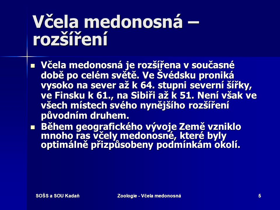 SOŠS a SOU KadaňZoologie - Včela medonosná25 Použité zdroje http://www.priroda.cz http://www.priroda.cz http://www.priroda.cz http://www.obh.cz http://www.obh.cz http://www.obh.cz http://www.osel.cz http://www.osel.cz http://www.osel.cz Daněk, G.: Zoologie.