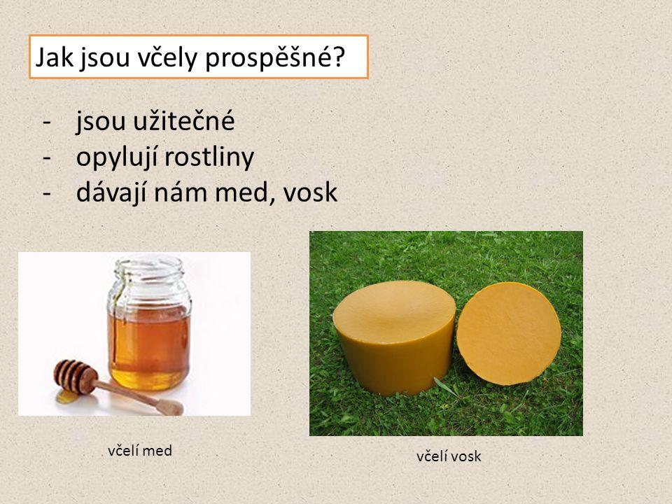 Jak jsou včely prospěšné? -jsou užitečné -opylují rostliny -dávají nám med, vosk včelí med včelí vosk