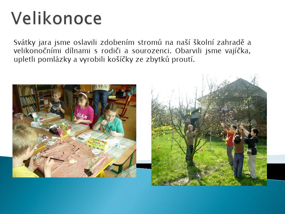 Svátky jara jsme oslavili zdobením stromů na naší školní zahradě a velikonočními dílnami s rodiči a sourozenci.