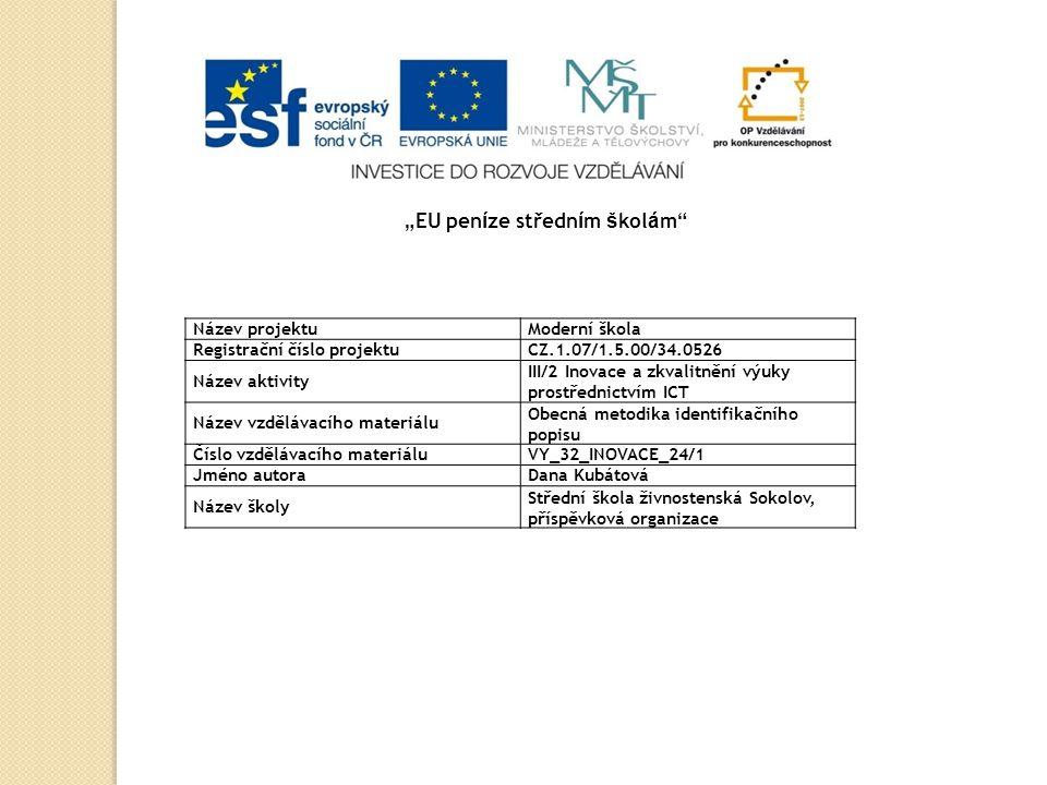 Obecná metodika identifikačního popisu tvorba identifikačního záznamu informační a obsahová analýza dokumentová analýza hlavní prameny popisu