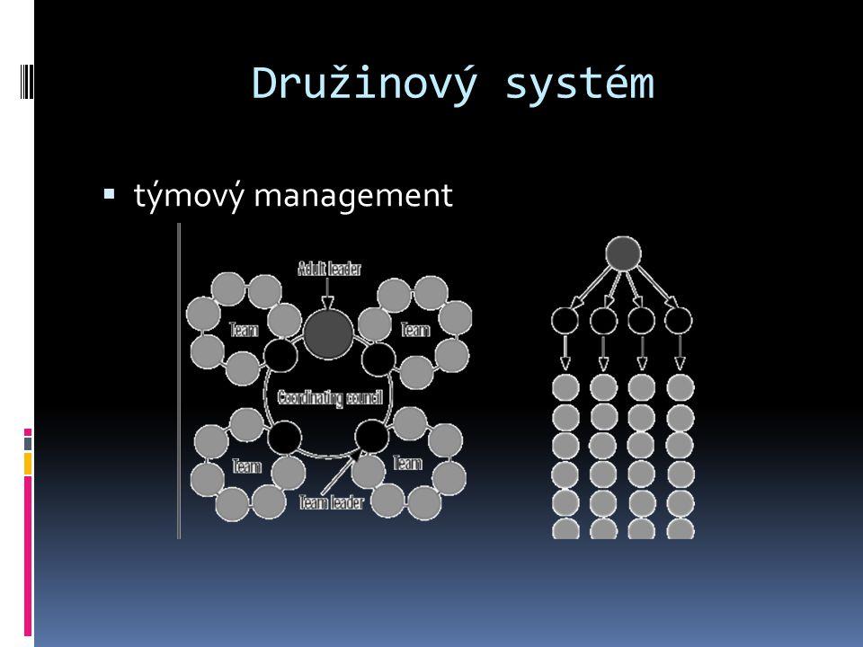 Družinový systém  týmový management