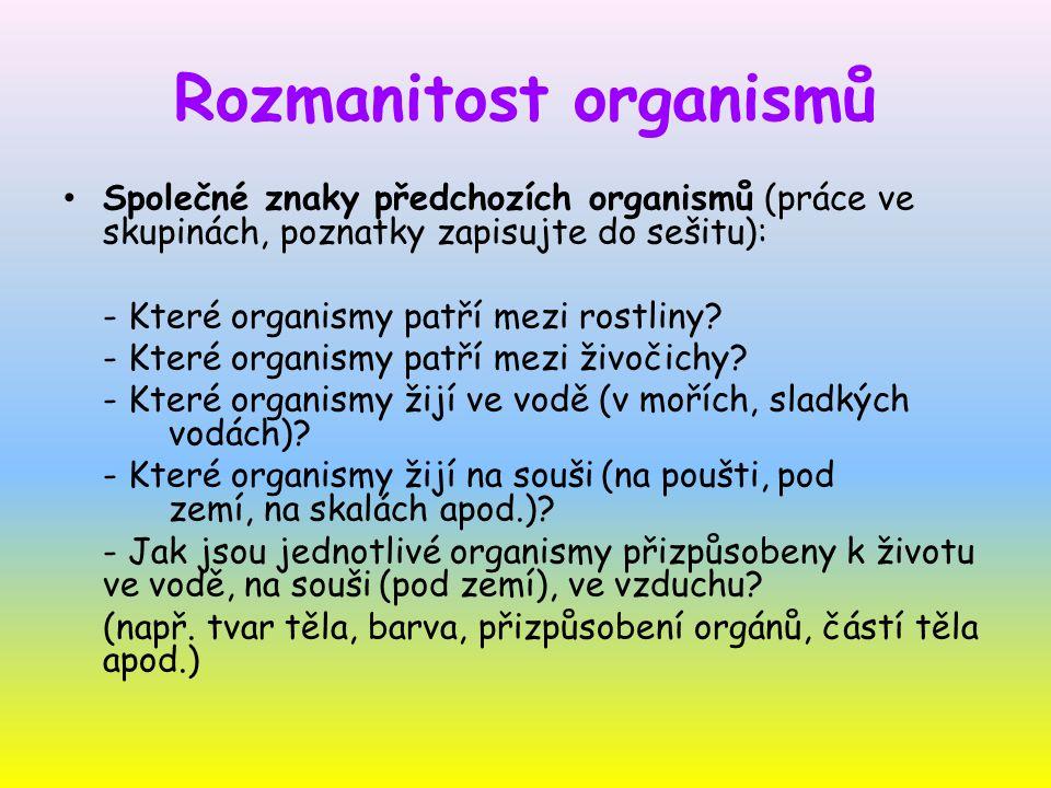 Rozmanitost organismů Organismy se od sebe liší stavbou těla a způsobem života Podle společných znaků jsou organismy uspořádány do těchto skupin: - bakterie - sinice - houby - rostliny - živočichové