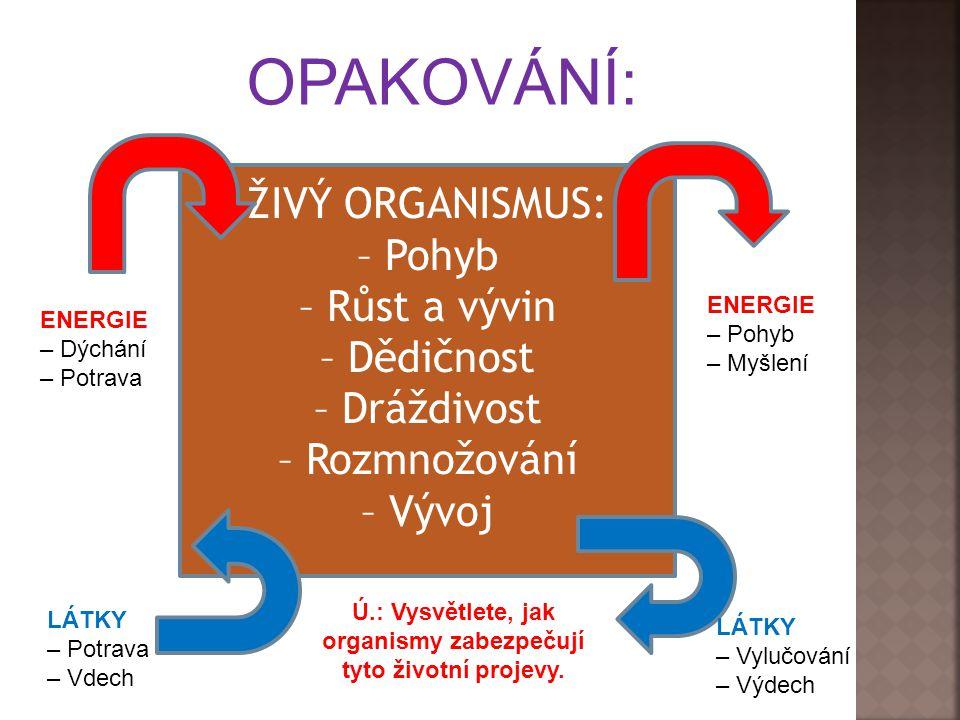 ŽIVÝ ORGANISMUS: – Pohyb – Růst a vývin – Dědičnost – Dráždivost – Rozmnožování – Vývoj OPAKOVÁNÍ: ENERGIE – Dýchání – Potrava ENERGIE – Pohyb – Myšlení LÁTKY – Potrava – Vdech LÁTKY – Vylučování – Výdech Ú.: Vysvětlete, jak organismy zabezpečují tyto životní projevy.