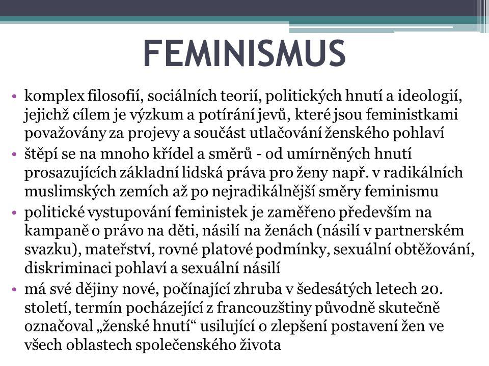 FEMINISMUS komplex filosofií, sociálních teorií, politických hnutí a ideologií, jejichž cílem je výzkum a potírání jevů, které jsou feministkami považ